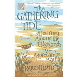Cover Image for The Gathering Tide by Karen Lloyd