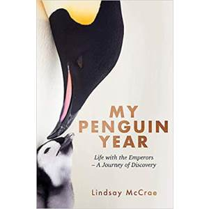 my-penguin-year