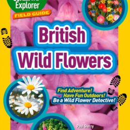 BRITISH WILDFLOWERS