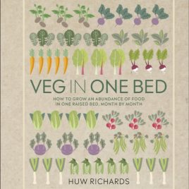 Veg in One Bed : How to Grow an Abundance of Food in One Raised Bed, Month by Month