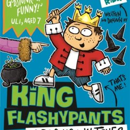 King Flashypants and the Boo-Hoo Witches : Book 4