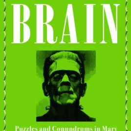 Frankenstein's Brain : Puzzles and Conundrums in Mary Shelley's Monstrous Masterpiece