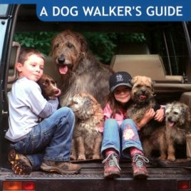 Lake District a Dog Walker's Guide