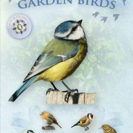 Let's Look for Garden Birds : 1