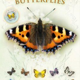 Let's Look for Butterflies : 2