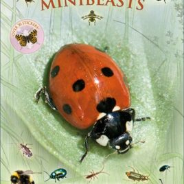 Let's Look for Minibeasts : 9