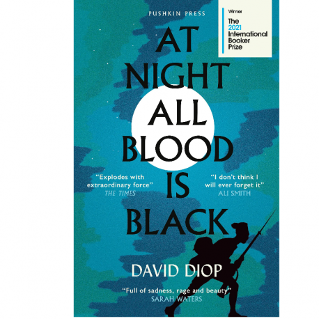 Cover Image for At Night All Blood is Black by David Diop